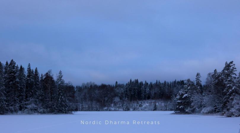 Nordic Dharma silent Retreat. Mindfulness meditation indsigt vipassana. Christin Illeborg