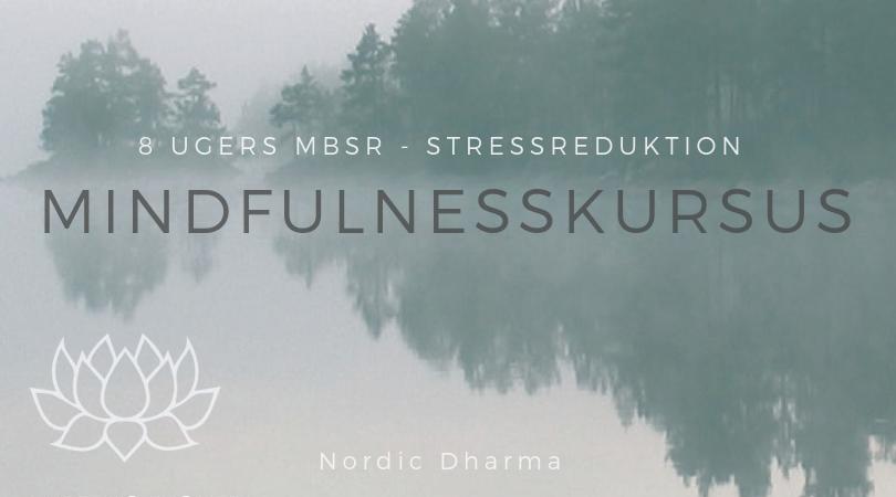8ugers_mbsr_mindfulnesskursus_Nordic Dharma Christin Illeborg
