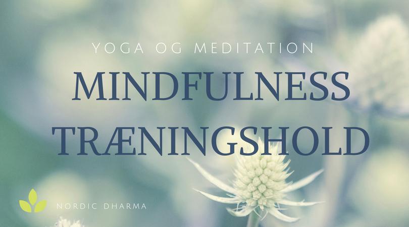 Mindfulness træningshold med yoga og meditation