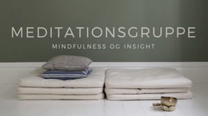 Christin Illeborg_Meditationsgruppe_insight