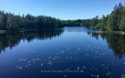 Trine Vendelboe Juul skriver om sine oplevelser fra et silent retreat