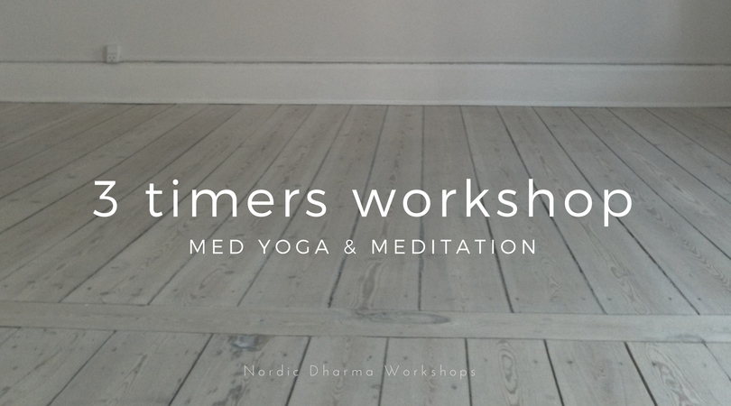 3 timers workshop m yoga og meditation. D. 21/10