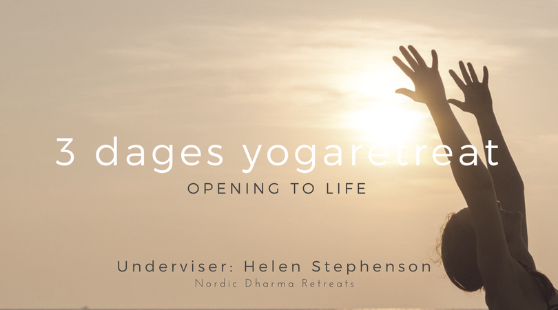 Opening to life. Yoga og meditationsretreat d. 2-4 nov. Valby.